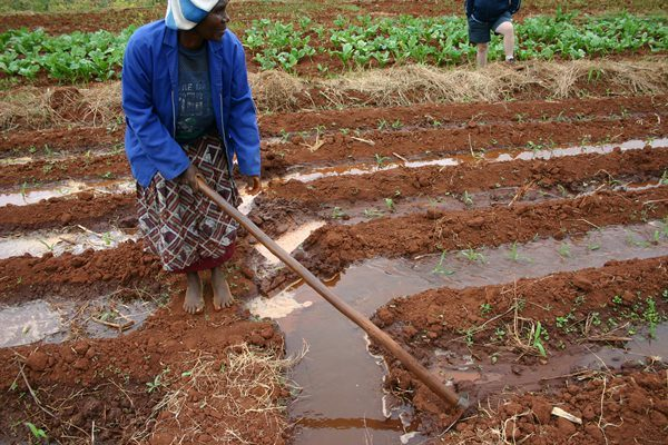 Registration for Zambian on-farm water resources re-opened