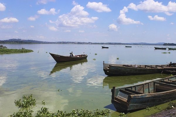 Fish stocks on the rebound in East Africa's Lake Victoria