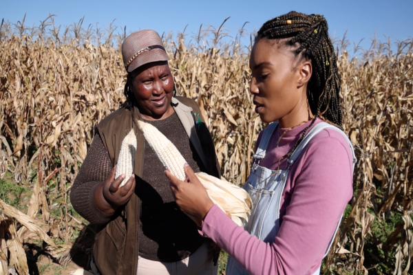 Here's what you can expect in African Farming this week!